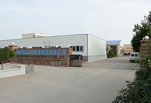 Shandong Fengdun Leather Shoes CO.,Ltd