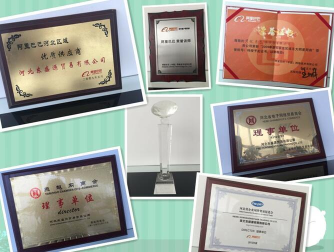 Hebei Dongshengyuan Trading Co.,Ltd.