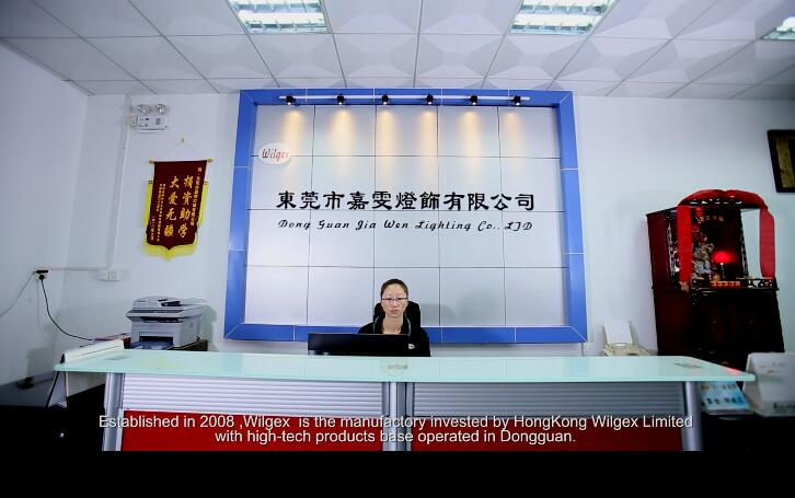 Dongguan Wilgex Lighting Co., Ltd.