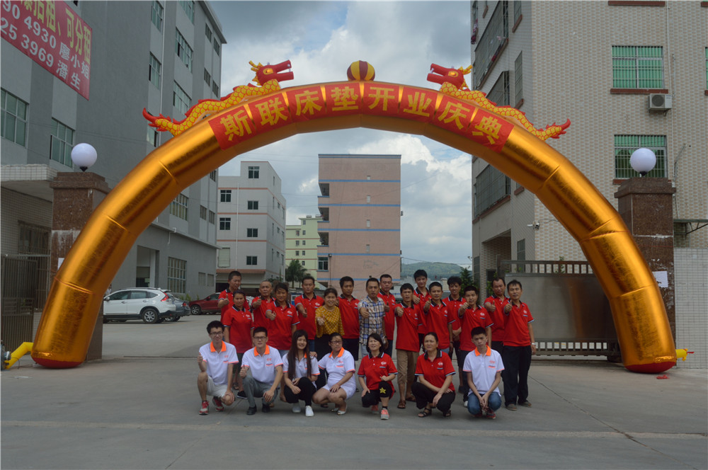 Huizhou Sialiy Intelligent Furniture Co.,LTD