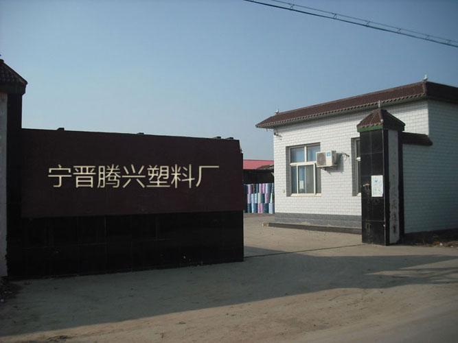Zhaoxian Tengxing Plastic Fashion Co., Ltd