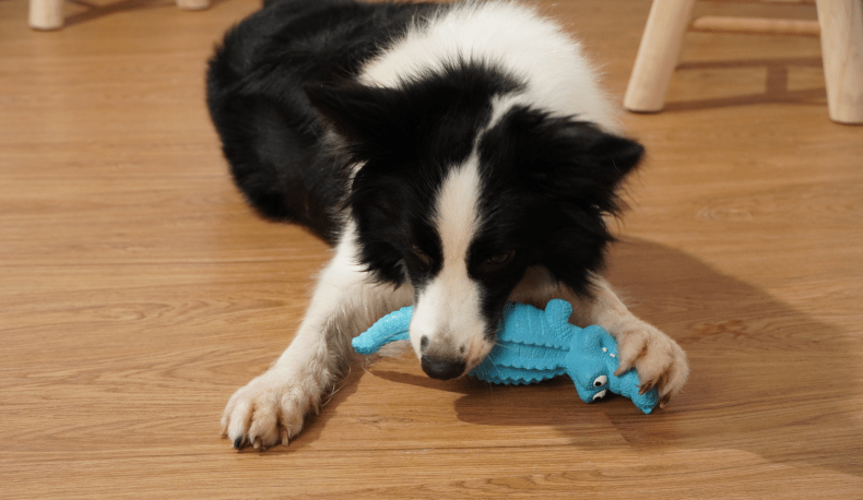 Durable Indestructible toy