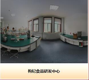 Ningxia Wolfberry Goji Industry Co.,ltd