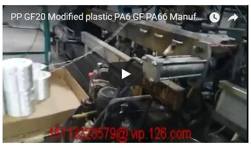PP GF20 Modified Plastic/ PA6 GF20/ PA66 GF30 Producer