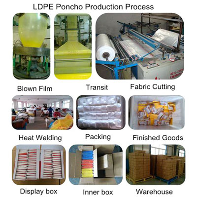 PE Production Line