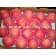 fresh red delicious fuji apple