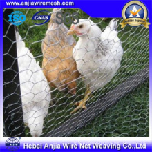 Anping Factory Supply Galvanized Hexagonal Wire Net