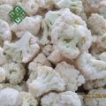Masse gefrorene frische Mischgemüse gefrorene Karotte