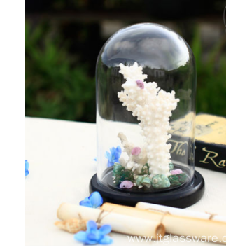 Wholesale Wood Cloche Bell Jar Flower Glass Dome Set