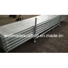 10' Steel Tube with Fittings|Scaffolding|Tube Lock|Twist Lock|Galvanized|Tubelock