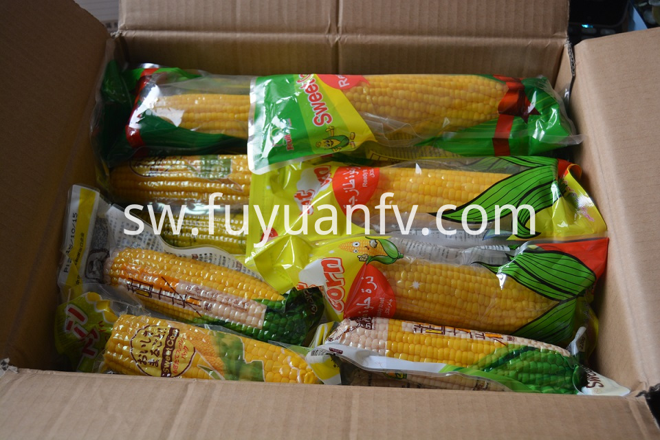 Fresh Sweet Corn 7