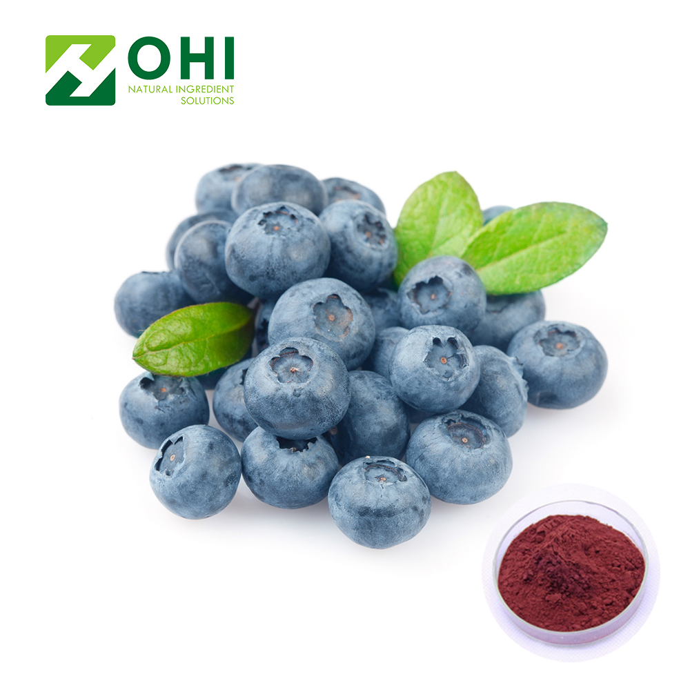 Blueberry extract powder Anthocyanosides Anthocyanidin