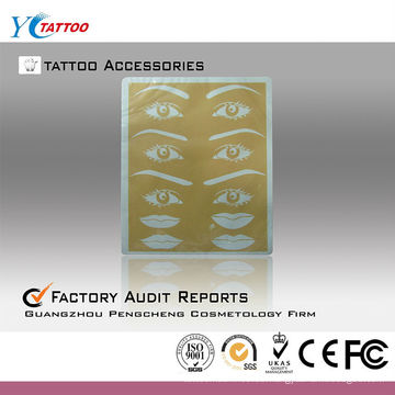 Piel sintética de la práctica del tatuaje de la ceja y del labio