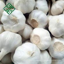 2018 nouvelle récolte ail naturel frais 3p / 4p / 5p / ail blanc pur