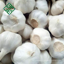 2018 new crop fresh natural garlic 3p / 4p /5p/ pure white garlic