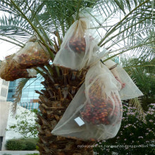 Eco-friendly plastic date bags at low price for sale to protect fruit