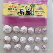 Neue Ernte natürlicher frischer normaler weißer Knoblauch