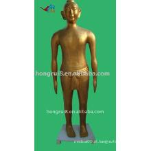 166cm Antique bronze acupuntura bronze