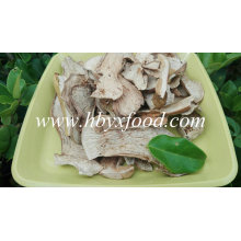 All Grade Dried Mushroom Boletus Edulis Growing