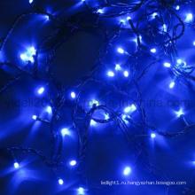 Оптовые рождественские 100 светодиодов 110V 220V 24V Праздничная вечеринка LED Fair Light