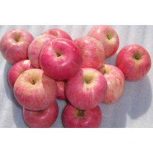 New Crop FUJI Apple with High Quality