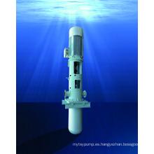 Bomba API vertical de aguas residuales tratadas