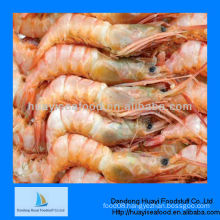 Frozen deep sea red shrimp