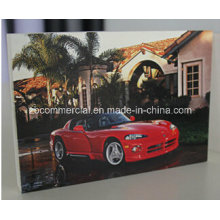Water/Fire/UV-Resistant PVC Panel/Board for Advertisement