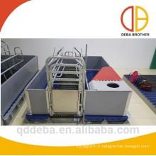 cages de mise bas maternelles galvanisées à chaud