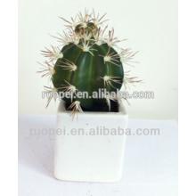 Decoração artificial em vaso de alta qualidade da planta do cacto mini interna para a casa