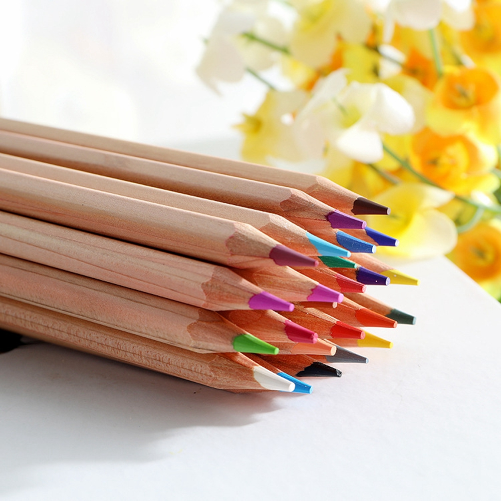Promotional Custom Logo 24 Coloured Pencil