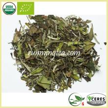 Organic Certified Peony Tea White Tea