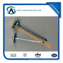 Galvanisierter Dach-Nagel / Dach-Nägel / gewölbte Dach-Nagel-Hersteller in China