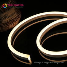 LED néon extérieur bande lumineuse néon étanche IP68