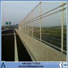(ISO9001) Gemacht in China 868 dekorativer konkurrenzfähiger Preis schützender doppelter Draht Gartenzaun