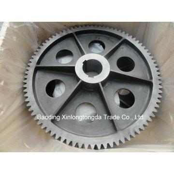 Rueda de engranaje recto con mecanizado CNC