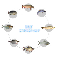Poisson attractif de crabe crevette - DMPT