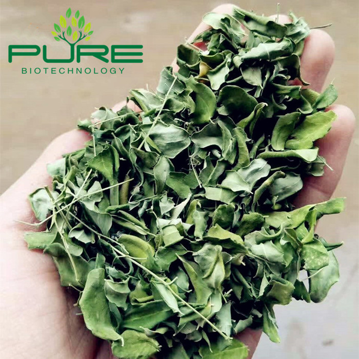 Moringa Oleifera Dried Leaves (3)