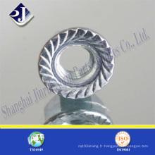 Écrou de bride à haute résistance Asme (avec du zinc)