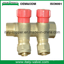 OEM&ODM Quality Brass Forged 2-Way Manifold (AV9070)