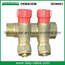OEM & ODM Brass forjado de qualidade de 2 vias Manifold (AV9070)
