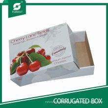 Cajas durables de fruta de cereza de venta caliente