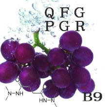 Régulateurs de croissance des plantes Inhibiteurs de croissance Daminozide B9