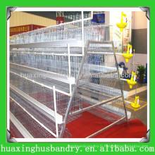 Cage de canard au poulet le plus vendu