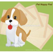 Cachorro cachorro almohadilla