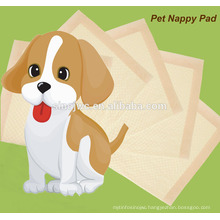 dog puppy Pad