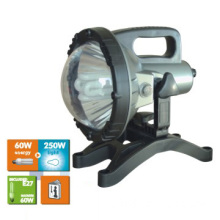 fluorescent working lamp