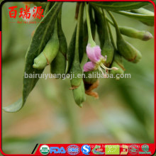 Online shopping goji berry slim goji berry himalayan goji berry anti age