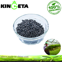 Environmental protection carbon based organic fertilizer