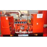 80kw/100kVA CHP Natural Gas Generator/Biogas Generator/Methane Gas Generator/CNG Gas Generator with CE/ISO/Ciq/SGS/Soncap Certificate